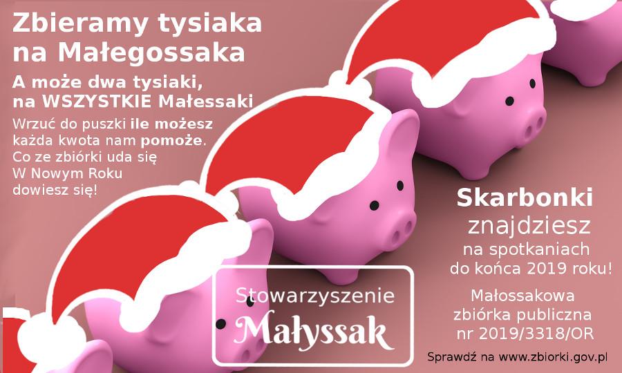 piggy-mikolajki4